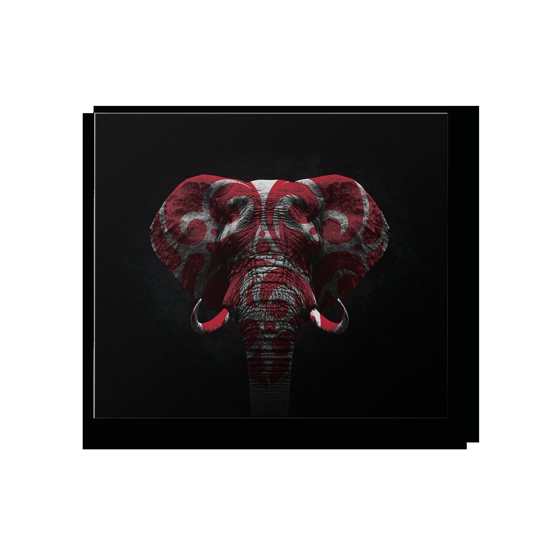 cadre déco maison éléphant
